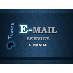 Email Hosting 5 Emails
