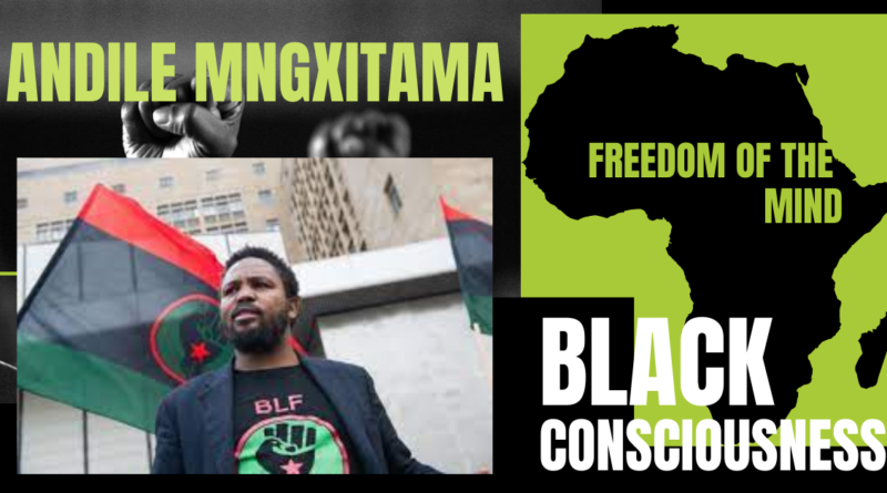 Andile Mngxitama – Video – Black Consciousness